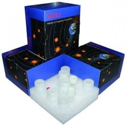 Slika za sileksmagna-g cell culture dna