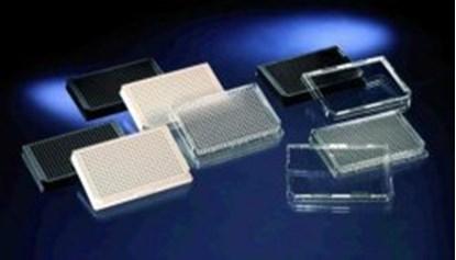 Slika za 384 black sterile cell culture w/lid